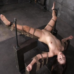 Bondage and BDSM